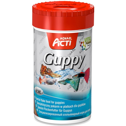 Acti guppy for Guppy fish food
