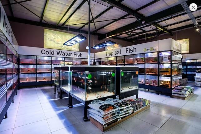 Pet habitat south africa for Pet supermarket fish tanks